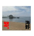 海野さんのスタンプ(個別スタンプ:18)