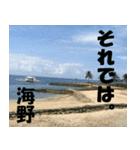 海野さんのスタンプ(個別スタンプ:19)