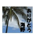 海野さんのスタンプ(個別スタンプ:23)