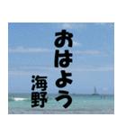 海野さんのスタンプ(個別スタンプ:24)
