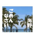 海野さんのスタンプ(個別スタンプ:25)