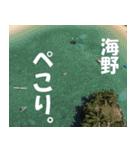 海野さんのスタンプ(個別スタンプ:29)