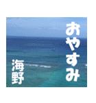 海野さんのスタンプ(個別スタンプ:30)
