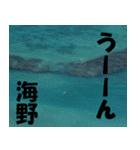 海野さんのスタンプ(個別スタンプ:37)