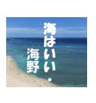 海野さんのスタンプ(個別スタンプ:40)