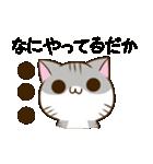 静岡弁のキジトラねことハムスター 2(個別スタンプ:05)