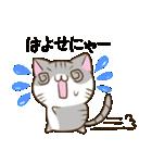 静岡弁のキジトラねことハムスター 2(個別スタンプ:13)