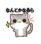 静岡弁のキジトラねことハムスター 2(個別スタンプ:19)