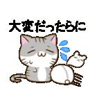 静岡弁のキジトラねことハムスター 2(個別スタンプ:22)