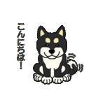 黒シバのいる生活(個別スタンプ:01)