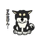 黒シバのいる生活(個別スタンプ:03)