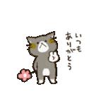チャンパチとあそぼ【くまさん思いやり編】(個別スタンプ:01)