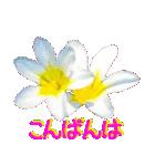 kikimama Flower Sticker(個別スタンプ:03)