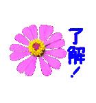 kikimama Flower Sticker(個別スタンプ:07)