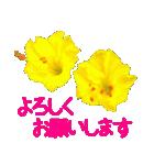 kikimama Flower Sticker(個別スタンプ:09)