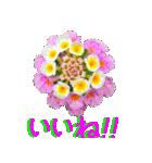 kikimama Flower Sticker(個別スタンプ:10)