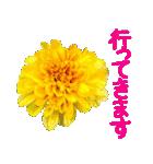 kikimama Flower Sticker(個別スタンプ:11)