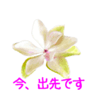 kikimama Flower Sticker(個別スタンプ:17)