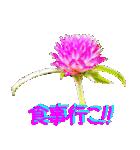 kikimama Flower Sticker(個別スタンプ:31)