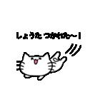 しょうたスタンプ2(ネコくん)(個別スタンプ:28)