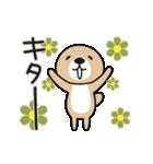 動け!突撃!ラッコさん5(個別スタンプ:07)