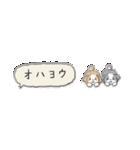 Small Type Shih-Tzu(個別スタンプ:01)
