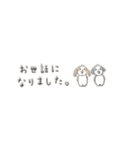 Small Type Shih-Tzu(個別スタンプ:12)