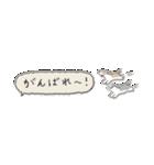 Small Type Shih-Tzu(個別スタンプ:25)