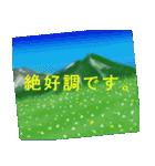 山のスタンプ 1(個別スタンプ:9)