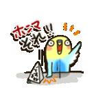 インコちゃん日常パック2(個別スタンプ:9)
