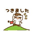渋め猫のKさん<日常用シンプルスタンプ>(個別スタンプ:16)