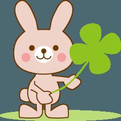 かわいいウサギの日常生活