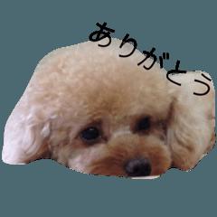 るんるん925