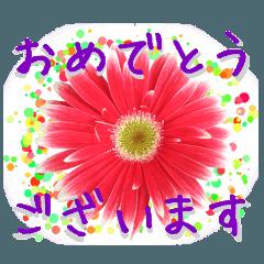 お祝いに花を♪