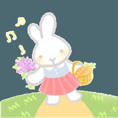 キャシー - かわいい小さなウサギ