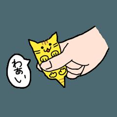 ディボにゃん part.1
