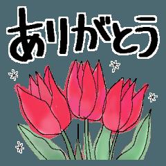 毎日使う言葉*水彩の花*大きな文字