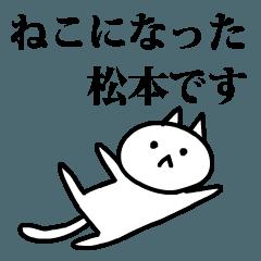 猫になった松本