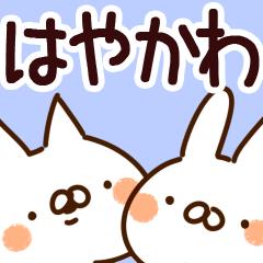 【はやかわ/速川/早川】専用