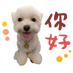 Guo's Life. 02
