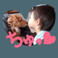 犬(ましゃ♂4歳)と僕2歳