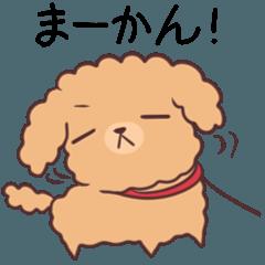 名古屋弁のトイプー 2