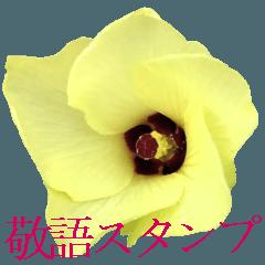 花畑スタンプ3