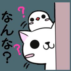 和歌山弁のわんこと小鳥5