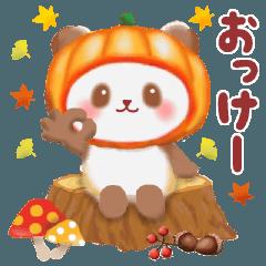 かぼちゃパンダさん「秋」