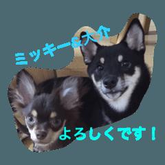 大介&ミッキー