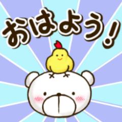 シャイくまちゃん~きほん~(NEW)