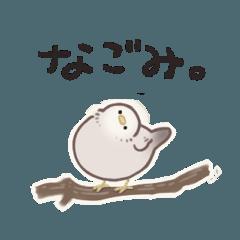 ころころ小鳥ちゃんの一日