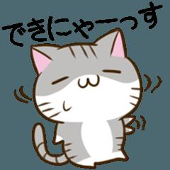 静岡弁のキジトラねことハムスター