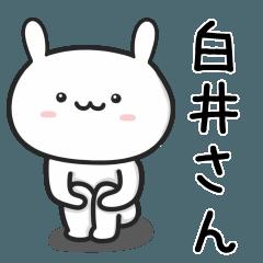 【白井】さんが使うウサギ